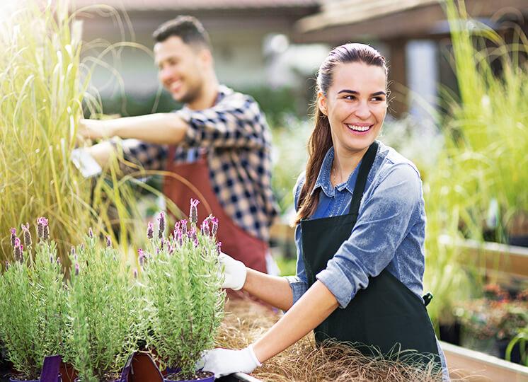 Weiterbildung Gartenbau Landschaftsbau Wbs Training